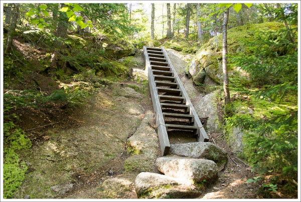 Ladder to Middle Sugarloaf