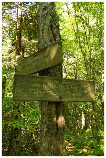 Junction Trail on Sugarloaf