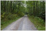 Sugar Run Road