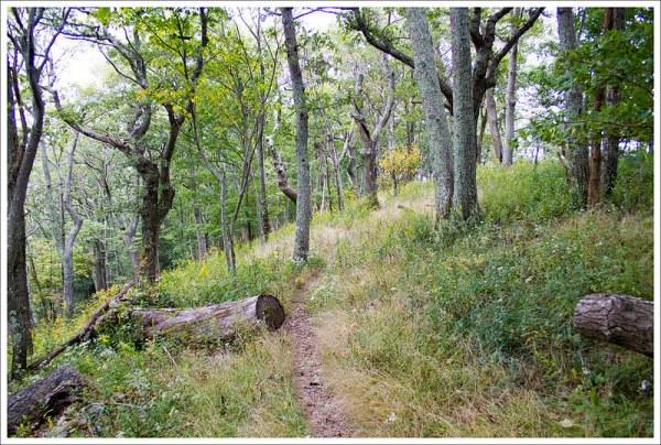 Ridge Walking