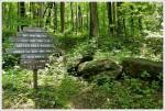 Pinnacle Trail Sign