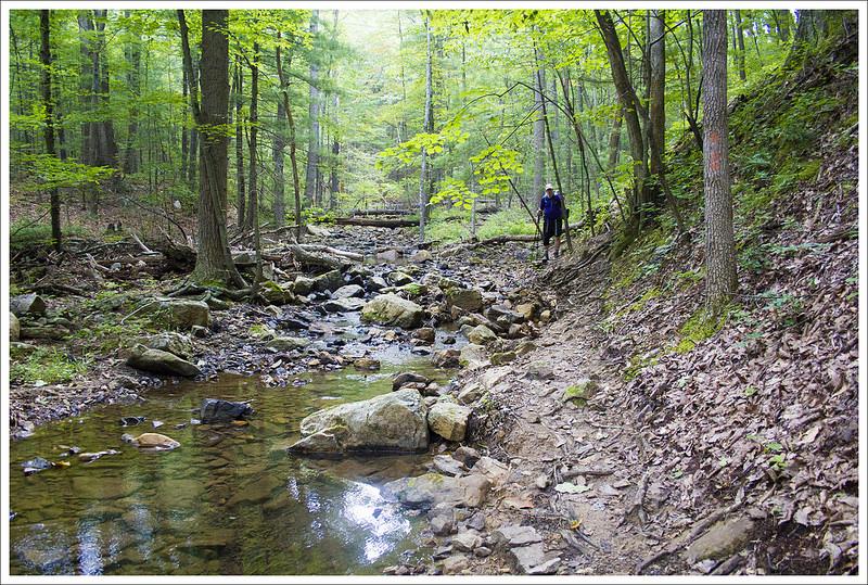 Erosion Along the Trail