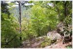 Halfmoon Mountain Trail