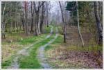 Lewis Mountain Trail