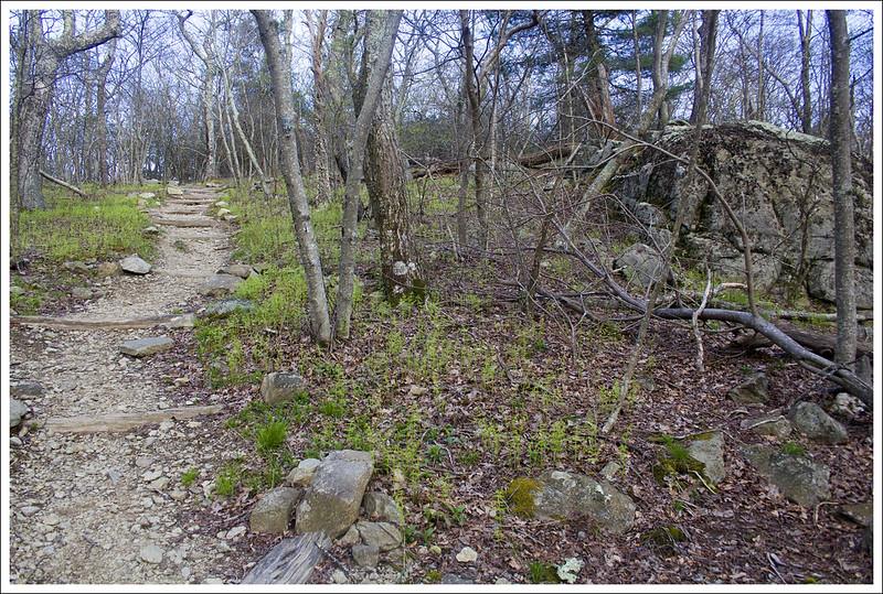 Lewis Mountain Virginia Trail Guide