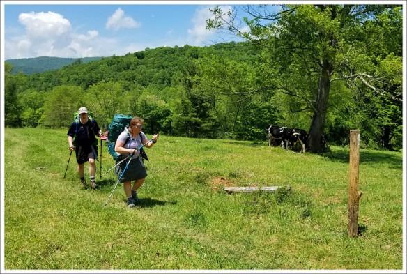 Appalachian Trail and Creeper Trail – Holston River to