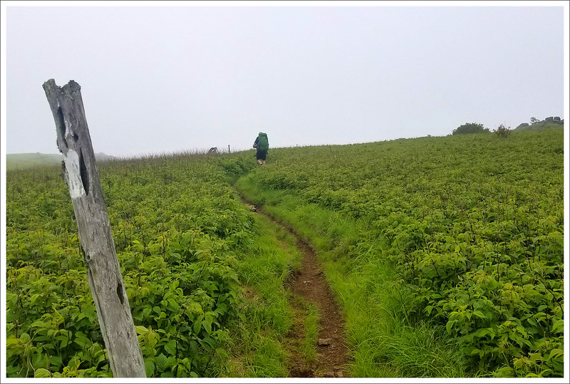 Hiking Toward Buzzard Rock