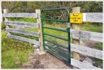 Fence on Pine Mountain