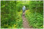 Walking on the Appalachian Trail