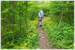 Walking on the Appalachian Trail