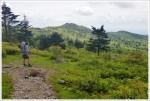 What a great Appalachian Trail View