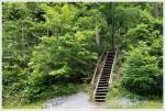 Appalachian Trail Rejoins the Creeper