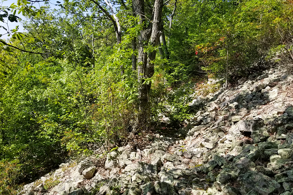 The trail across one of many talus slopes.
